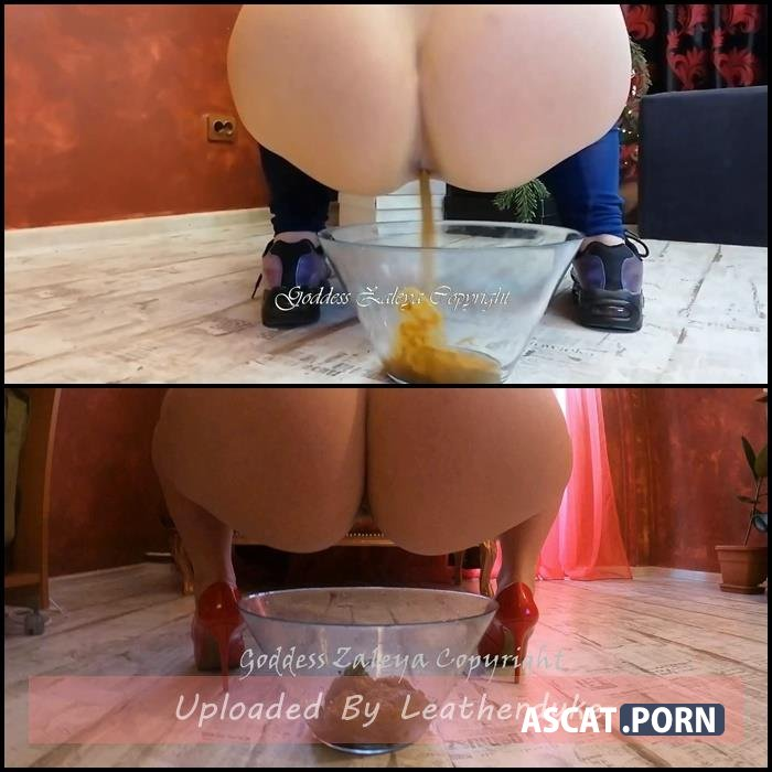 Goddess Zaleya – Fucking Machine, Dirty Scat Feeding